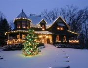 Residential Christmas Light Installers Lansing MI