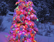 Residential lighted christmas tree