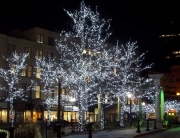 Commercial Christmas Lights Installation